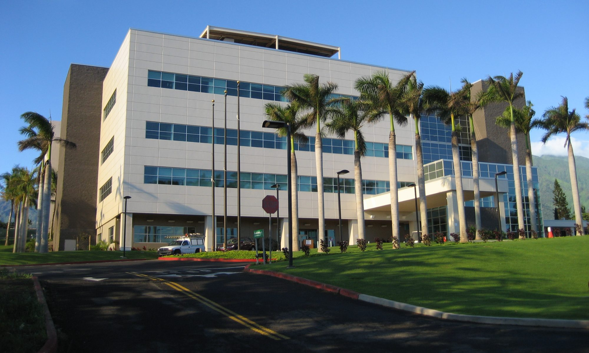 Maui Physicians Portal